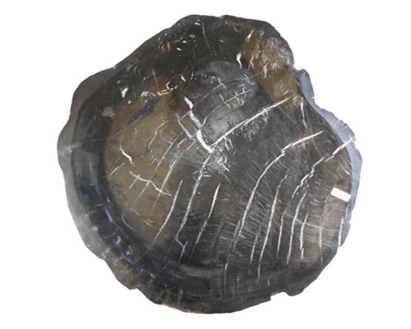 Petrified Wood Plate Large Size#PLT380