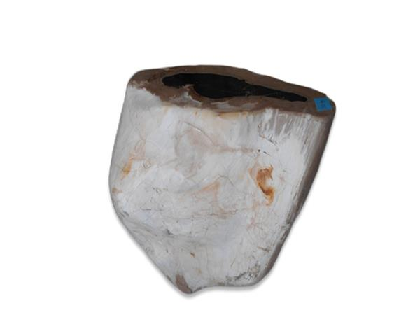 Petrified Wood Round Stool Full Polish#SRFP228
