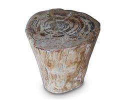 Petrified Wood Round Stool Full Polish#SRFP106