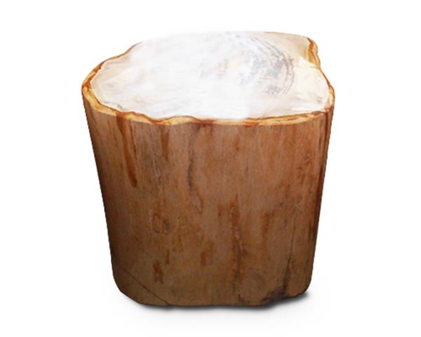 Petrified Wood Round Stool Full Polish#SRFP108