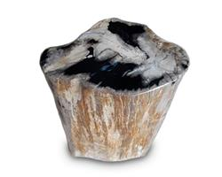 Petrified Wood Round Stool Full Polish#SRFP109