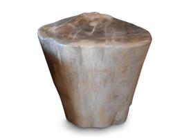 Petrified Wood Round Stool Full Polish#SRFP116