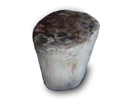 Petrified Wood Round Stool Full Polish#SRFP124