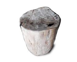 Petrified Wood Round Stool Full Polish#SRFP132
