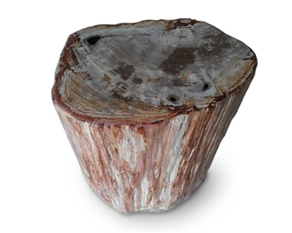 Petrified Wood Round Stool Full Polish#SRFP135