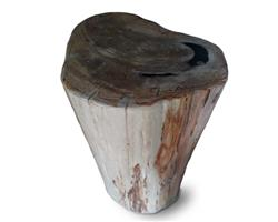 Petrified Wood Round Stool Full Polish#SRFP150