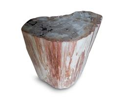 Petrified Wood Round Stool Full Polish#SRFP152