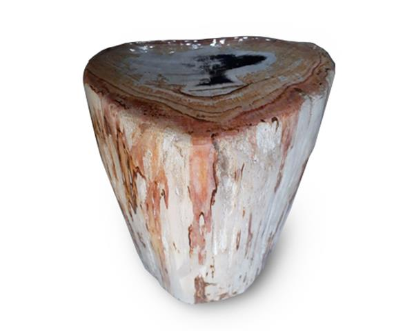 Petrified Wood Round Stool Full Polish#SRFP157