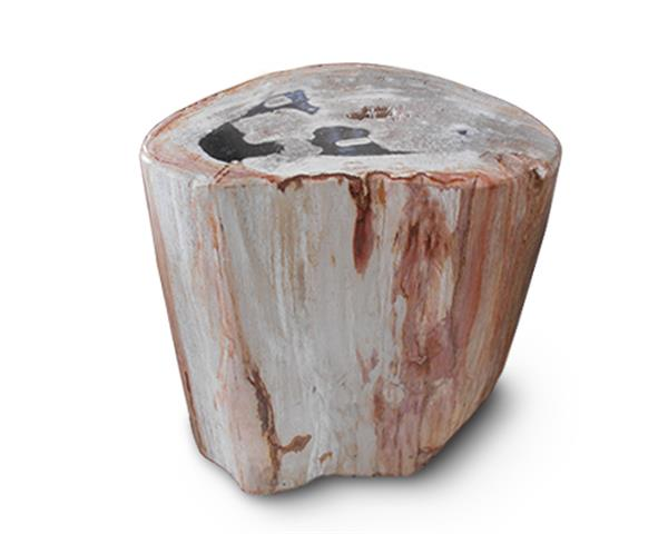 Petrified Wood Round Stool Full Polish#SRFP158