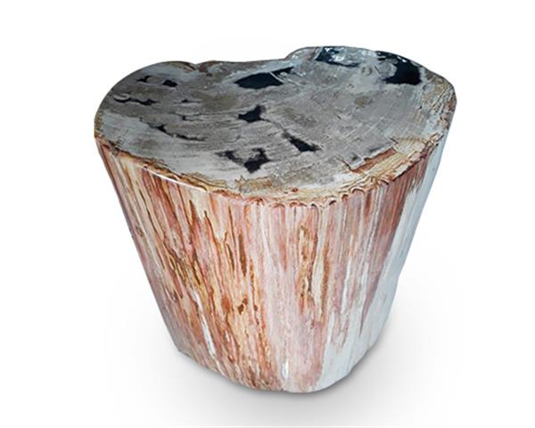 Petrified Wood Round Stool Full Polish#SRFP160