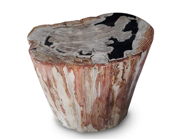Petrified Wood Round Stool Full Polish#SRFP162