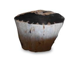 Petrified Wood Stool Round Full Polish#SRFP170