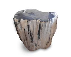 Petrified Wood Stool Round Full Polish#SRFP171
