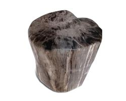 Petrified Wood Stool Round Full Polish#SRFP172