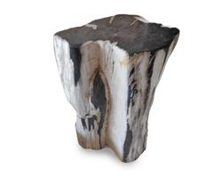 Petrified Wood Stool Round Full Polish#SRFP175