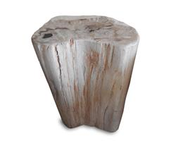 Petrified Wood Stool Round Full Polish#SRFP181