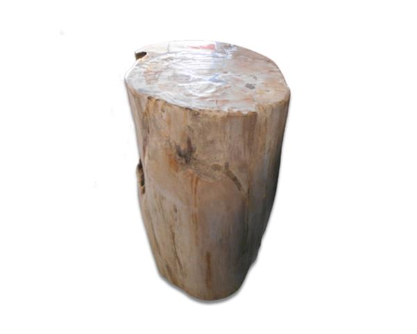 Petrified Wood Round Stool Full Polish#SRFP196