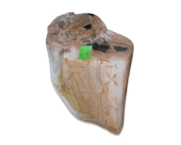 Petrified Wood Round Stool Full Polish#SRFP205