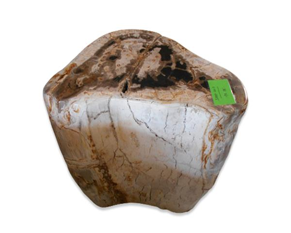 Petrified Wood Round Stool Full Polish#SRFP207