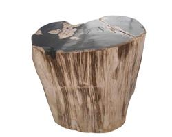 Petrified Wood Round Stool Full Polish#SRFP50