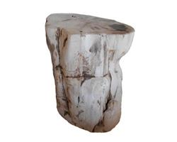 Petrified Wood Round Stool Full Polish#SRFP57