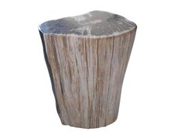 Petrified Wood Round Stool Full Polish#SRFP78