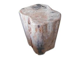 Petrified Wood Round Stool Full Polish#SRFP86