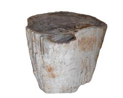 Petrified Wood Round Stool Top Polish#SRTP01
