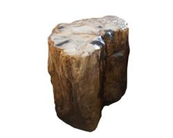 Petrified Wood Round Stool Top Polish#SRTP05
