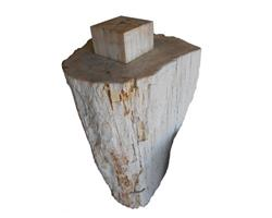 Petrified Wood Round Stool Top Polish#SRTP09