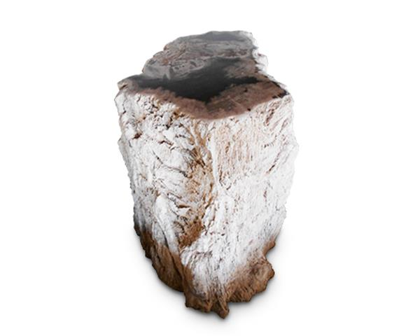 Petrified Wood Round Stool Top Polish#SRTP16