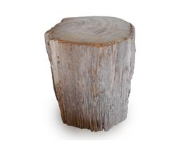 Petrified Wood Stool Round Top Polish#SRTP19
