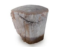 Petrified Wood Stool Round Top Polish#SRTP21