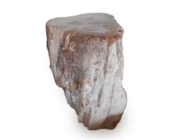 Petrified Wood Stool Round Top Polish#SRTP24