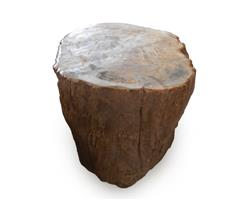 Petrified Wood Stool Round Top Polish#SRTP27