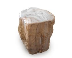 Petrified Wood Stool Round Top Polish#SRTP28