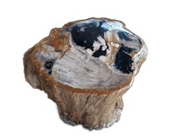 Petrified Wood Stool Round Top Polish#SRTP33
