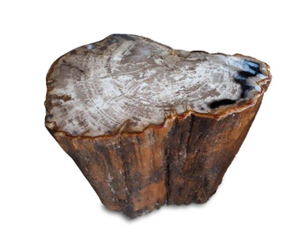 Petrified Wood Stool Round Top Polish#SRTP37