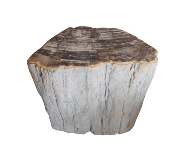 Petrified Wood Stool Top Polish#SRTP43