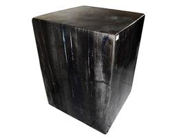 Petrified Wood Square Stool Full Polish#SSFP05