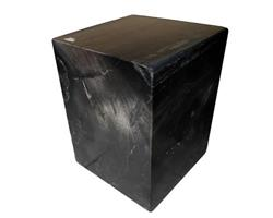 Petrified Wood Square Stool Full Polish#SSFP06