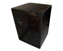 Petrified Wood Square Stool Full Polish#SSFP09